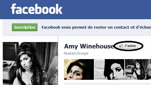 facebook_amy_winehouse_defunte_fan_page_.jpg