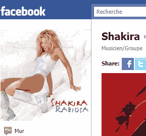 facebook_shakira_fan_page.png