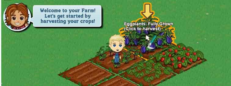 facebookette-farmville-2.jpg